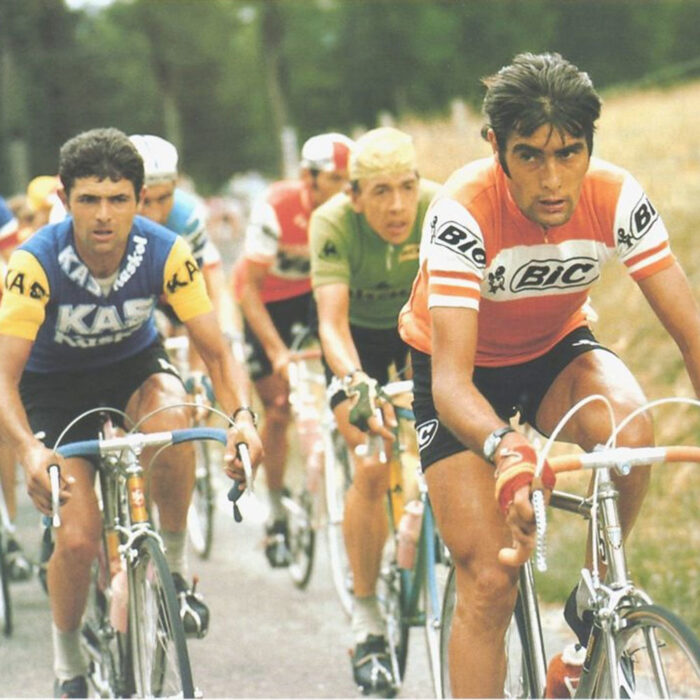 Bic France 1973 Maglia Storica Ciclismo