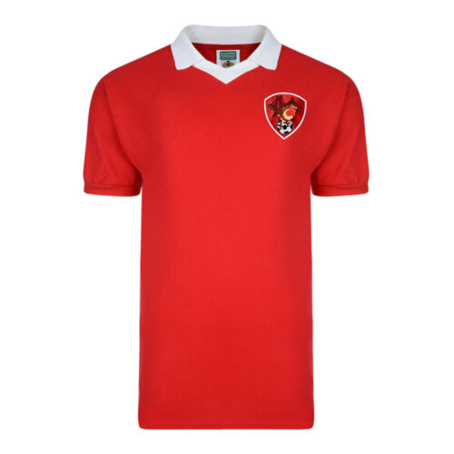 Bristol City 1976-77 Camiseta Retro Fútbol